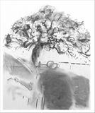 Oak (2004) by Jeremy Scrine, Painting, Charcoal on Paper