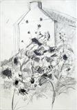 sunflowers oct 2014 by Jeremy Scrine, Drawing, Charcoal on Paper
